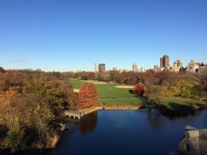 The View from Belvedere Castle